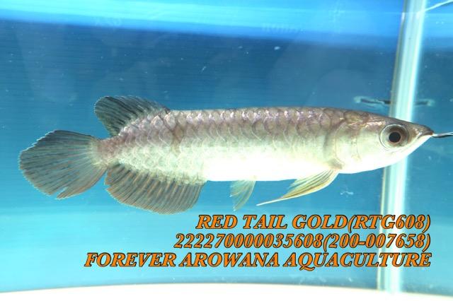 7766FD2B-5A7A-4654-9434-91C6BCD45124.jpeg